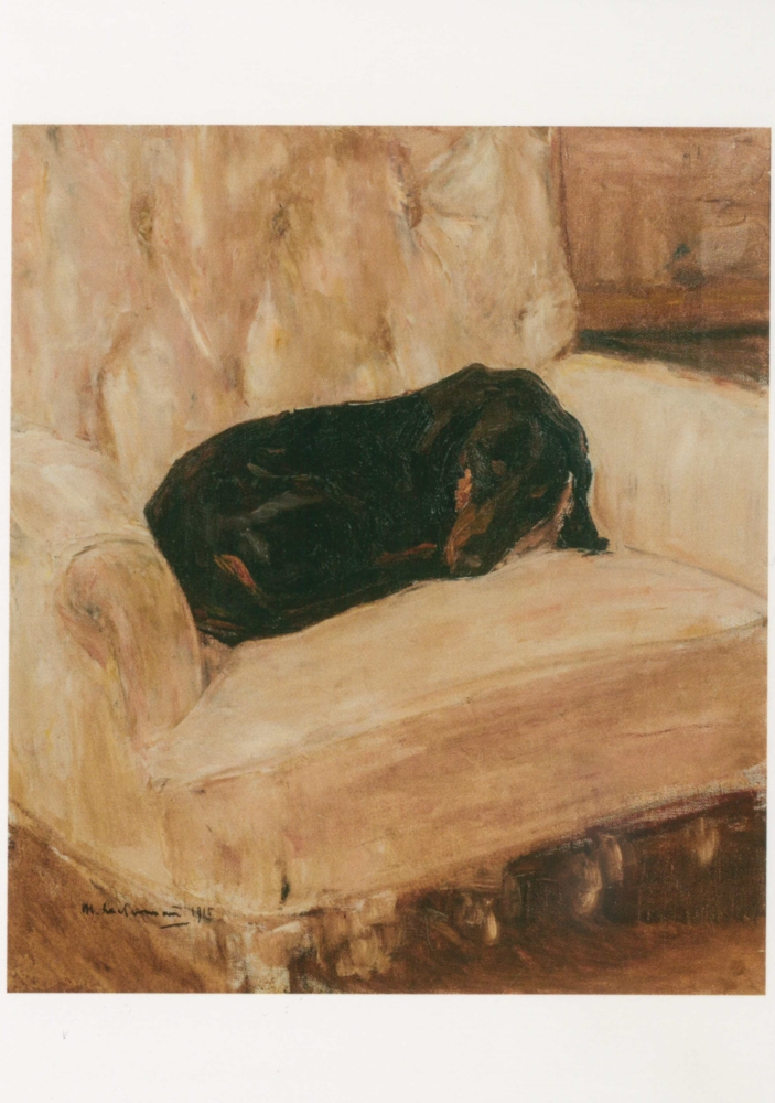 We love Animals - Max Liebermann, Schlafender Dackel, 1915