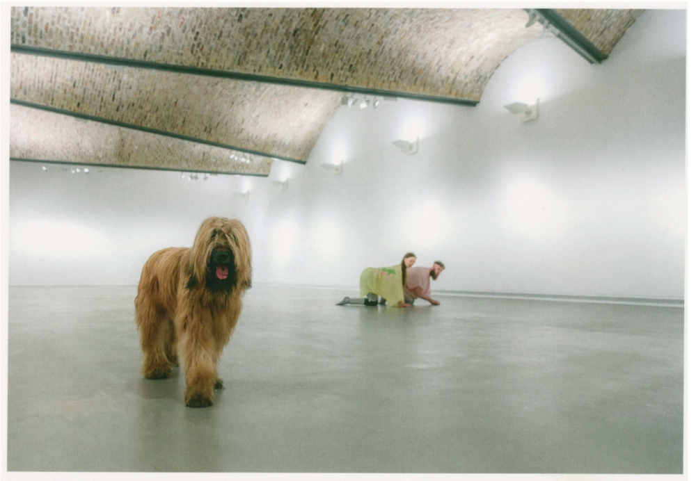 We love Animals - Performances for Pets, Performance im Kunstmuseum, 2017